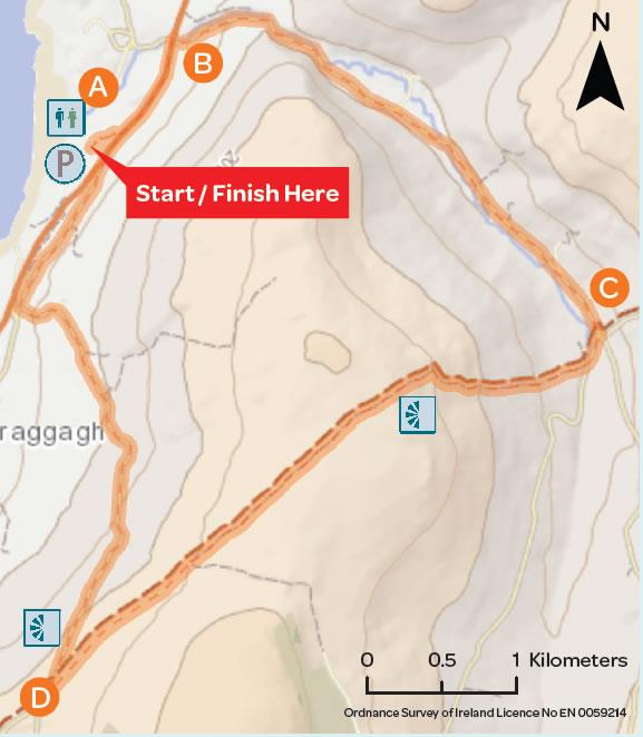Map Ballyvaughan Wood Loop